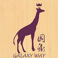 Galaxy Way Shop